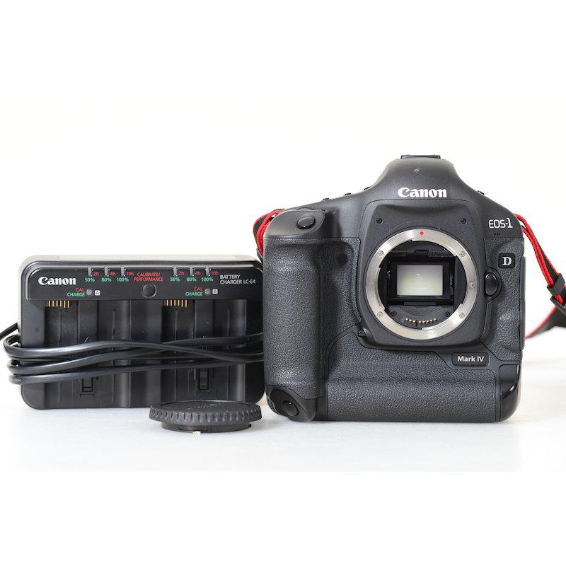 Canon EOS-1D Mark IV (16100 Auslösungen)
